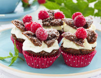 Chocolate muffins with raspberries Royalty Free Stock Photos