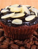Chocolate muffins with sliced almonds and coffee grains Stock Photo