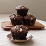 Chocolate muffins with white chocolate chips. Delicious chocolate muffins with white chocolate chips Royalty Free Stock Image
