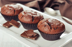 Chocolate Muffins Royalty Free Stock Photos