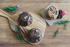 Chocolate muffin on wooden background. Royalty Free Stock Images