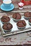 Chocolate muffins Royalty Free Stock Photo