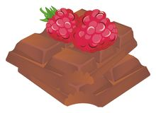 Chocolate nad rastberry ilustração stock