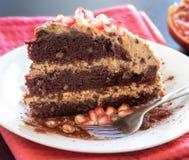 Chocolate, nuez y Prune Cake Fotografía de archivo libre de regalías