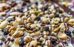 Chocolate Nut Slab Royalty Free Stock Photos
