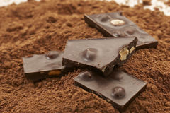 Chocolate with nuts. Chocolate pieces over cocoa Stock Images