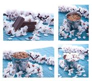 Chocolate with nuts on a background of beautiful flowers,collection Royalty Free Stock Image
