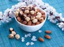 Chocolate with nuts on a background of beautiful flowers Stock Photo