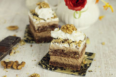 Chocolate and nuts cake Stock Image