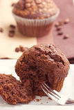 Chocolate oat bran muffins Royalty Free Stock Photos