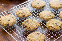 Chocolate Oatmeal Cookies. Flourless Chocolate Oatmeal Cookies are an excellent treat for those who are looking for a healthier alternative to sweets Royalty Free Stock Images