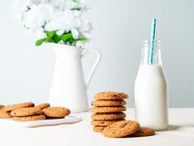 Chocolate oatmeal cookies and milk in bottle, healthy snack. Light background, grey light wall.  stock photography