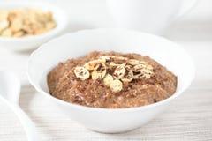 Chocolate Oatmeal or Oat Porridge Royalty Free Stock Photography