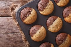 Chocolate orange muffins in baking dish horizontal top view Stock Photography