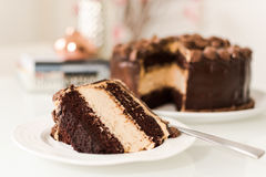 Chocolate and peanut butter cake stock photos