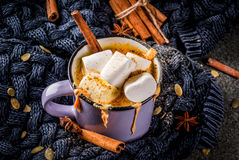 Chocolate picante caliente del blanco de la calabaza Foto de archivo libre de regalías