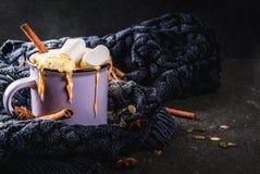 Chocolate picante caliente del blanco de la calabaza Fotografía de archivo
