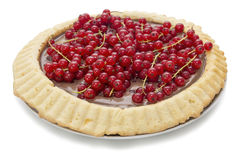 Chocolate pie with currants Royalty Free Stock Photo