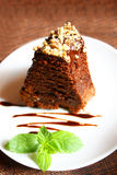 Chocolate pie with walnut. Decorated chocolate pie with walnut on plate Royalty Free Stock Photos