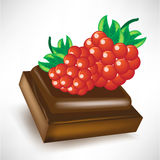 Chocolate piece with berry fruit Royalty Free Stock Photography