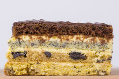 Chocolate piece of cake from biscuit dough with poppy seed, prune and walnuts Stock Photography
