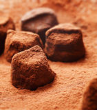 Chocolate Pieces in Cocoa Powder Stock Photo