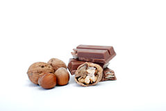 Chocolate pieces and nuts Royalty Free Stock Image