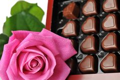 Chocolate  and pink rose Stock Photo