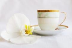 Chocolate poroso branco saboroso e xícara de café Foto de Stock
