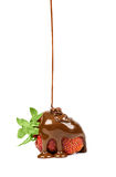 Chocolate is poured on strawberries isolated Royalty Free Stock Photo