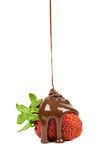 Chocolate is poured on strawberries isolated Stock Image