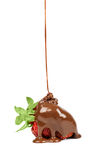 Chocolate is poured on strawberries isolated Stock Photos