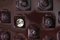 Chocolate Praline in a Box Royalty Free Stock Photos