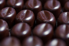 Chocolate praline candy Stock Photos