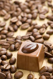 Chocolate praline and coffee beans Royalty Free Stock Image
