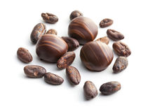 Chocolate pralines and cocoa beans Stock Images