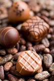 Chocolate pralines and cocoa beans Stock Image