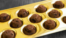 Chocolate pralines with cocoa powder Royalty Free Stock Images