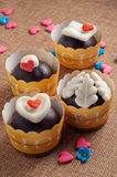 Chocolate Pralines Stock Images