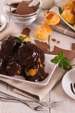 Chocolate profiteroles. Chocolate profiteroles with whipped cream on white dish stock image