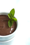 Chocolate Pudding With Mint Royalty Free Stock Photography