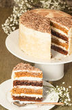 Chocolate pumpkin cake with spiced brown butter frosting Royalty Free Stock Photos