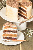 Chocolate pumpkin cake with spiced brown butter frosting Royalty Free Stock Photography