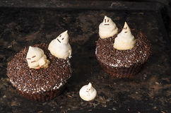 Chocolate pumpkin cupcake, decorated with meringue ghosts Stock Image