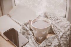 Chocolate quente acolhedor do inverno Foto de Stock