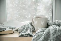 Chocolate quente acolhedor do inverno Fotografia de Stock