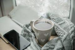 Chocolate quente acolhedor do inverno Fotografia de Stock Royalty Free