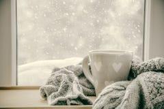 Chocolate quente acolhedor do inverno Imagens de Stock