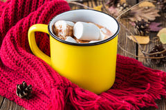 Chocolate quente com marshmallow Fotos de Stock Royalty Free