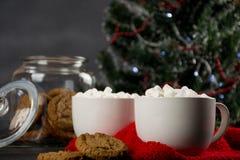 Chocolate quente com marshmallow e cookies Imagem de Stock Royalty Free